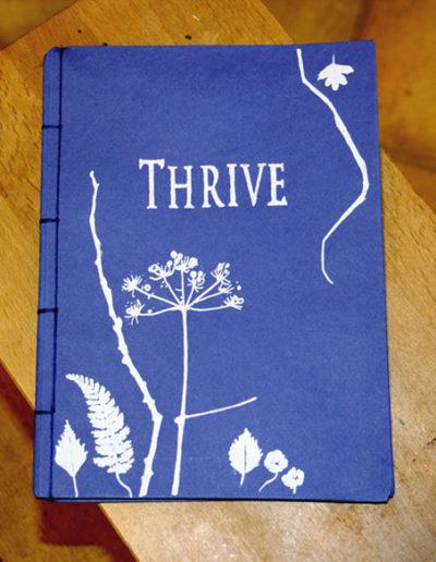 Thrive exhibition programme