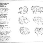 Little Hedgehog - Lithographic Print