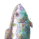 Page illustration, fish